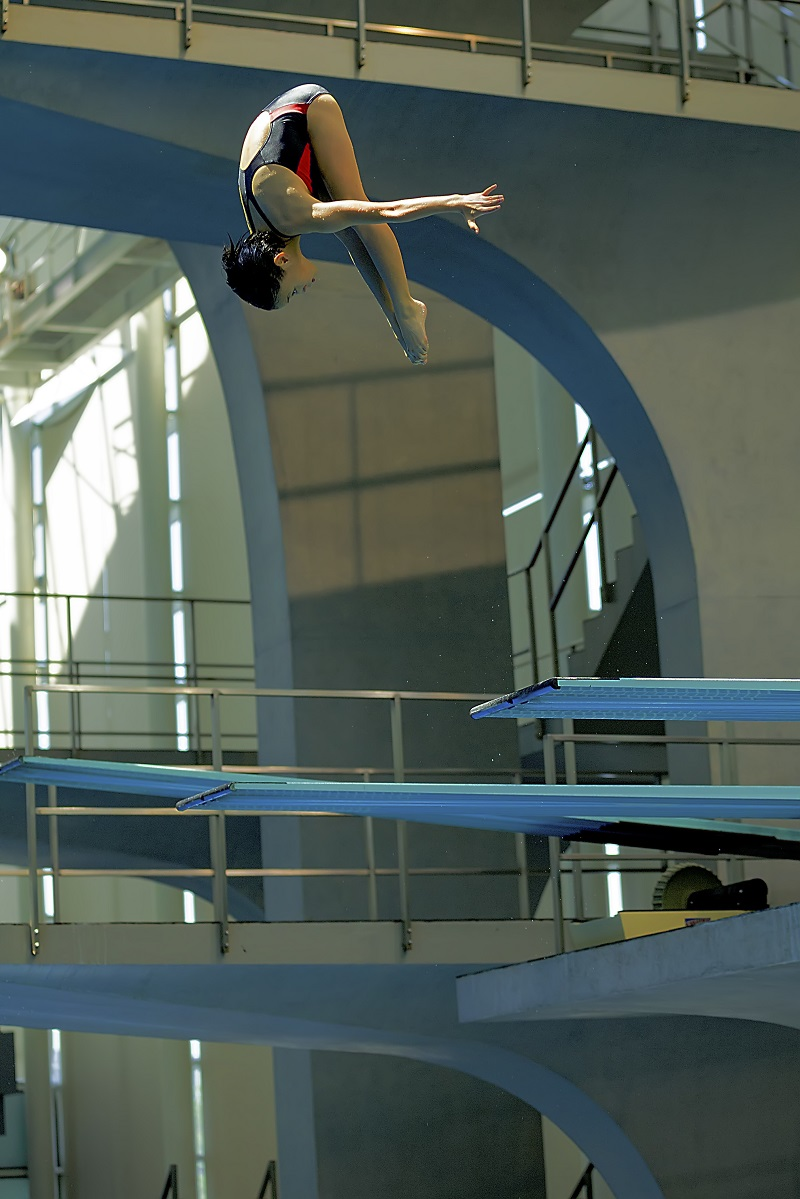 上海市第十六届运动会跳水