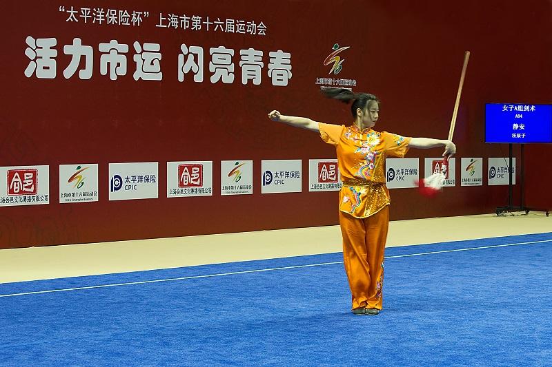 上海市第十六届运动会武术