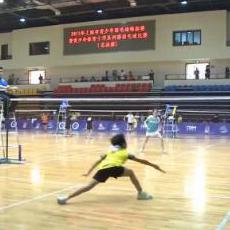 2015年上海市青少年羽毛球锦标赛暨青少年体育十项系列赛羽毛球比赛(总决赛)